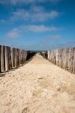 Um quebra-mar de madeira Fotos de Stock