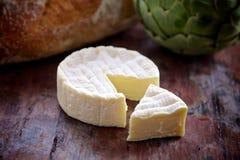 Um queijo gourmet Imagem de Stock Royalty Free