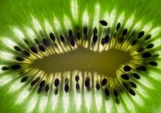 Um quivi suculento Imagem de Stock Royalty Free