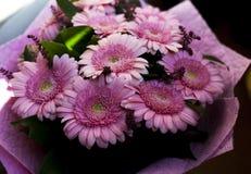 Um ramalhete bonito de herbers cor-de-rosa fotografia de stock