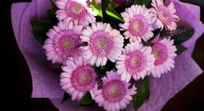 Um ramalhete bonito de herbers cor-de-rosa imagem de stock royalty free
