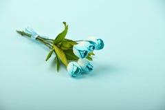 Um ramalhete das flores de papel da amoreira no fundo azul Imagens de Stock