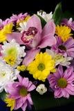 Um ramalhete das flores de tipos diferentes Fotos de Stock Royalty Free