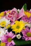 Um ramalhete das flores de tipos diferentes Imagem de Stock Royalty Free
