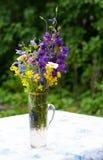 Um ramalhete das flores do campo escolhidas no país fotografia de stock