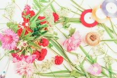 Um ramalhete das flores, falaris listrados verdes de uma erva do decorativel, fitas coloridas Imagens de Stock