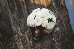 Um ramalhete das rosas brancas em uma árvore Imagem de Stock Royalty Free