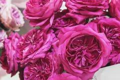 Um ramalhete das rosas de multi cores exóticas O camaleão floresce com as pétalas coloridas nas bordas Mercado da flor Imagem de Stock Royalty Free