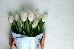Um ramalhete das tulipas brancas no papel de envolvimento azul com mãos da mulher em um fundo concreto branco Vista superior Conf Imagem de Stock