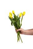 Um ramalhete de flores amarelas frágeis em uma mão do ` s do homem Foto de Stock