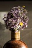 Um ramalhete de flores da floresta Fotos de Stock