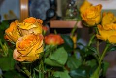 Um ramalhete de rosas alaranjadas brilhantes levemente murchos Fotos de Stock
