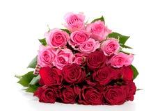 Um ramalhete de rosas cor-de-rosa e vermelhas Fotografia de Stock