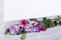 Um ramalhete de rosas japonesas encontra-se em um close-up do peitoril da janela Fotografia de Stock