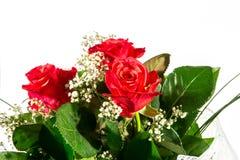 Um ramalhete de rosas vermelhas Imagens de Stock