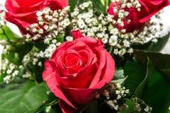 Um ramalhete de rosas vermelhas Foto de Stock Royalty Free