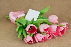 Um ramalhete de tulipas cor-de-rosa com fita e cartão do cetim Foto de Stock