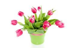 Um ramalhete de tulips cor-de-rosa Fotografia de Stock Royalty Free