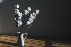 Um ramalhete do algodão em um jarro branco em uma tabela de madeira imagens de stock