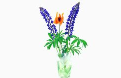 Um ramalhete dos wildflowers Imagem de Stock Royalty Free
