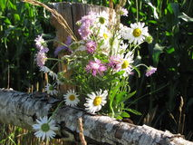 Um ramalhete dos wildflowers em uma cerca rural Imagem de Stock Royalty Free