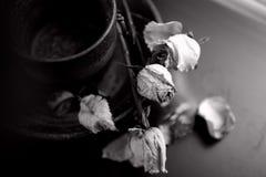 Um ramalhete secado das flores imagem de stock royalty free
