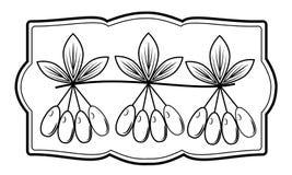 Um ramo de uma baga bonita do corniso, planta medicinal Bagas deliciosas ?teis da medicina e da nutri??o Imagem gr?fica no quadro ilustração stock