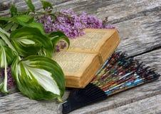 Um ramo do lilás persa em um livro velho fotografia de stock