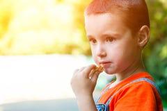 Um rapaz pequeno bonito imagens de stock royalty free