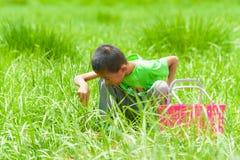 Um rapaz pequeno com uma cesta na grama Foto de Stock