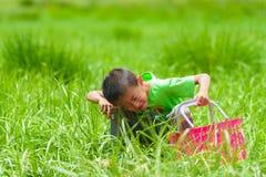 Um rapaz pequeno com uma cesta na grama Imagem de Stock