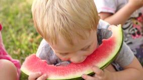 Um rapaz pequeno come a melancia no parque no verão video estoque