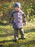 Um rapaz pequeno está na floresta do outono fotos de stock