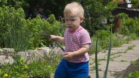 Um rapaz pequeno no jardim a aprender usar o equipamento de jardim foto de stock