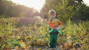 Um rapaz pequeno no traje da abóbora que guarda uma abóbora nas mãos video estoque