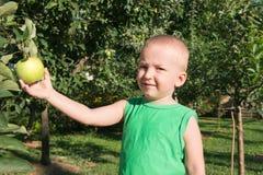 Um rapaz pequeno que escolhe uma maçã Fotos de Stock Royalty Free