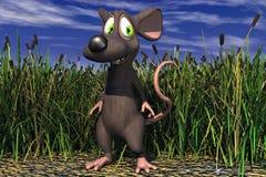 Um rato no campo Imagens de Stock