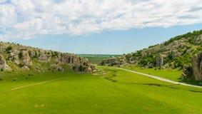 Um rebanho dos carneiros que pastam sobre a grama verde imagem de stock royalty free