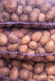 Um rede-saco com batatas para dentro Foto de Stock Royalty Free