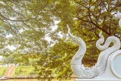 Um rei branco da estátua dos Nagas sob a árvore Imagens de Stock Royalty Free
