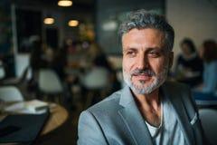 Um retrato de um homem de negócios maduro que senta-se em um café Copie o espa?o fotos de stock royalty free