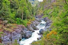Um rio áspero nas montanhas foto de stock
