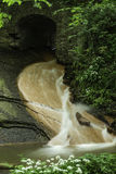 Um rio da floresta Imagem de Stock