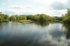 Um rio da represa. fotos de stock