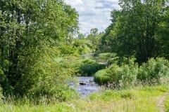 Um rio de enrolamento no país fotos de stock royalty free