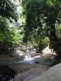 Um rio de fluxo em uma montanha Imagem de Stock