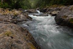Um rio de fluxo rápido corre sobre seixos e rochas no parque nacional olímpico, Washington State, EUA, exposição longa para adici imagem de stock royalty free