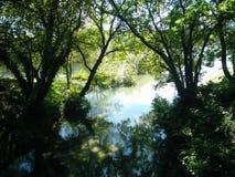Um rio do verde Foto de Stock Royalty Free