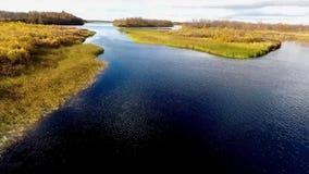 Um rio flui nesta cena bonita Escandinávia no outono definição 4K video estoque