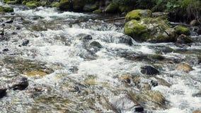 Um rio flui sobre rochas Foto de Stock Royalty Free